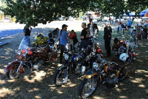 Some of the gang take a break in the shade at the Gisborne Sunday market.